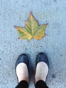 Leaf at my Feet